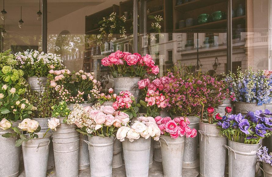 pink%20flowers%20in%20gray%20steel%20buc