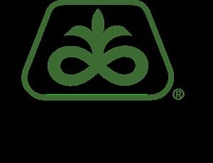 pioneer-logo-78CED46048-seeklogo.com.png