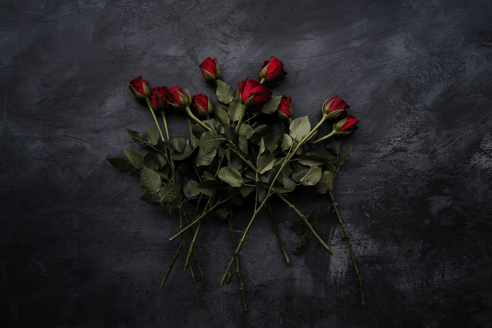 roses on grey background representing romance