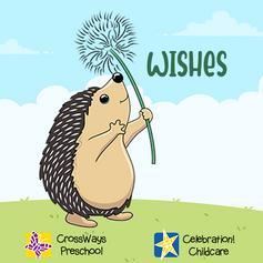 Grant a Wish...