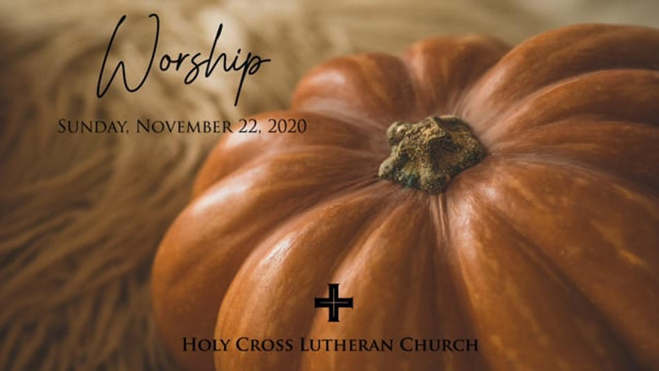 Sunday, November 22, 2020