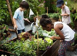 kid-garden-experience-idea.jpg