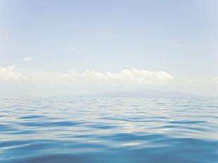 Florida Water Resources Monitoring Council
