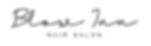 Blow Inn Logo.png