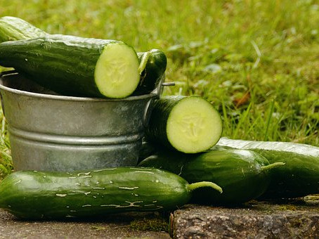 12 things you didn't know about cucumbers