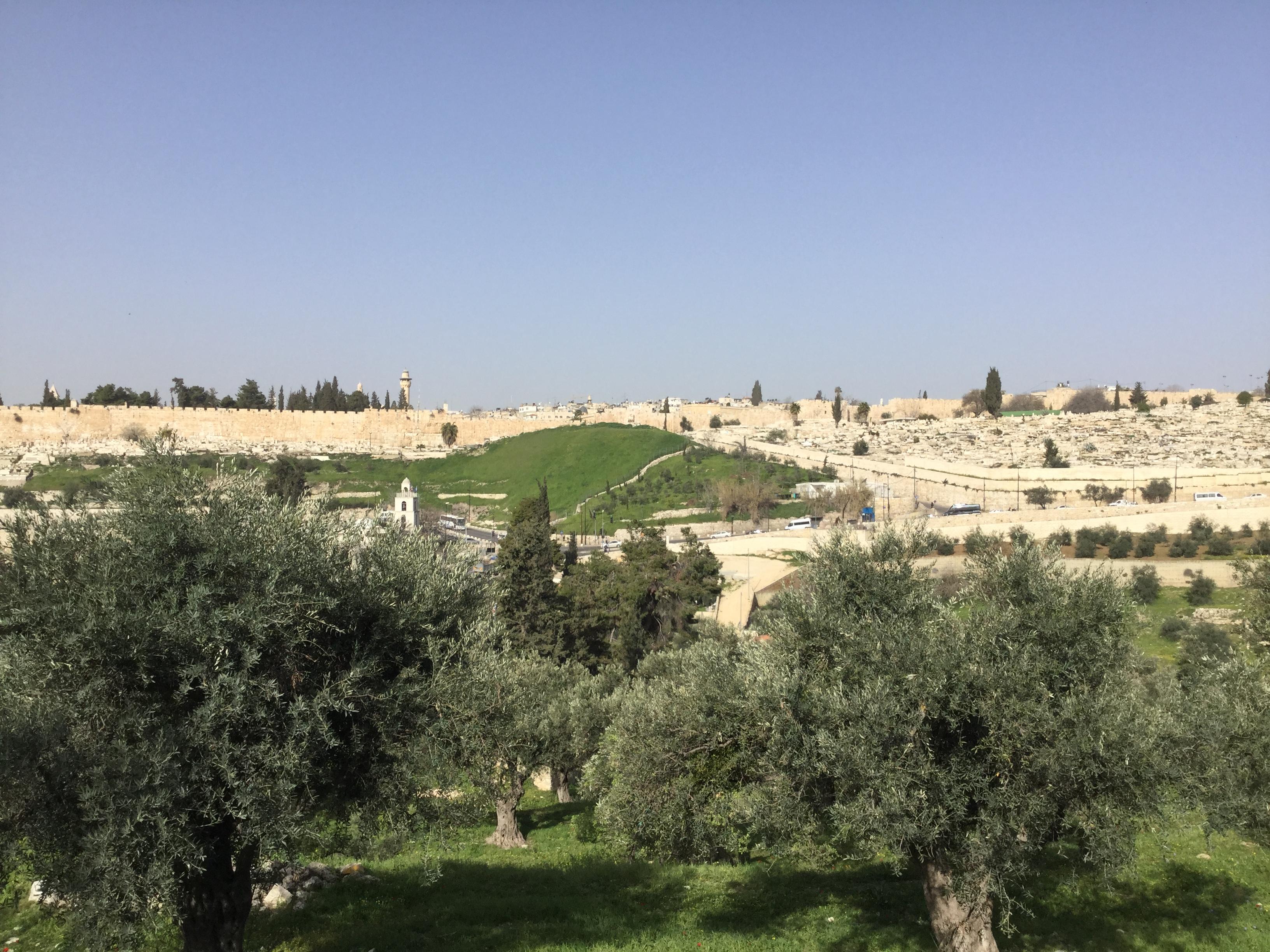 גבעת האריות | ירושלים