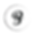 Barazza-logo-B.png