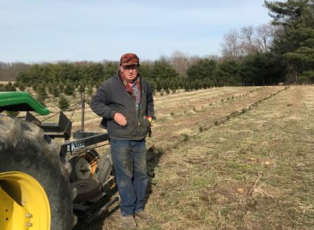 ICTGA Members Plant Trees for 2027 Harvesting Season
