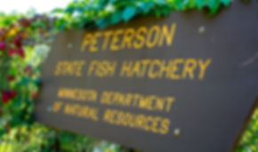 Peterson State Fish Hatchery Sign