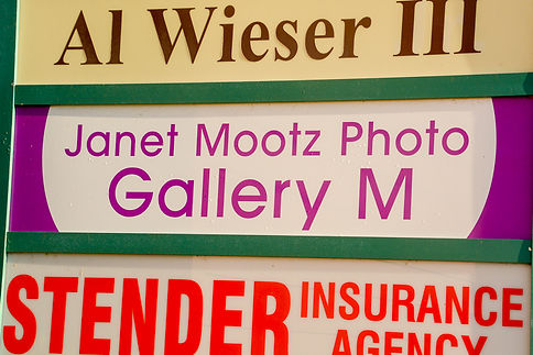 Gallery M sign