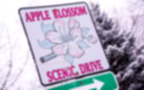 Apple Blossom Drive Scenic Byway Sign