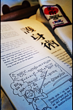 Beskrivelse af Ju-jitsu