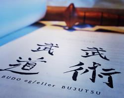 Klubbens skrifter om Budo