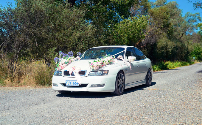 rebrowgarden_weddingcar3.JPG
