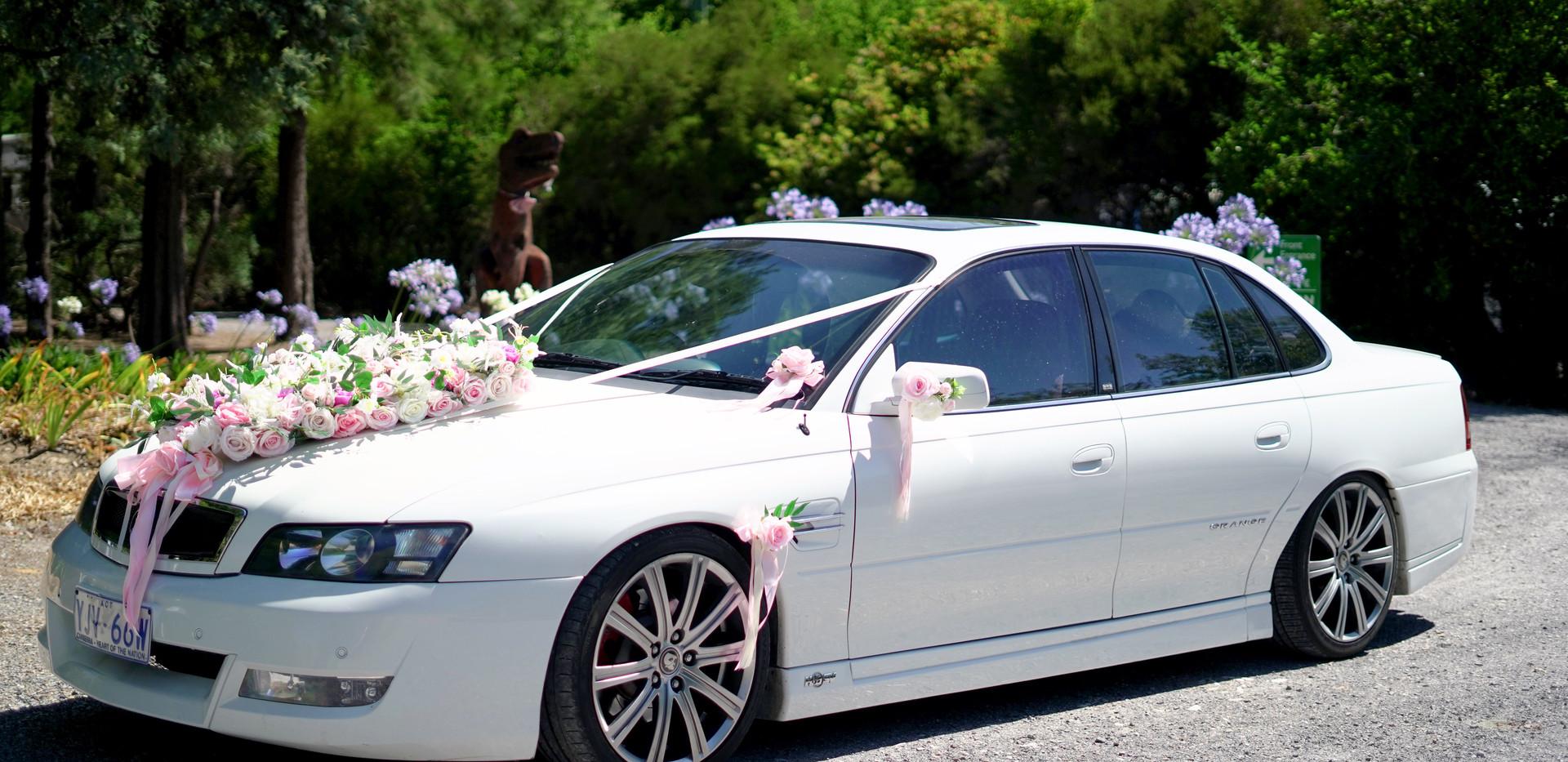 rebrowgarden_weddingcar.JPG