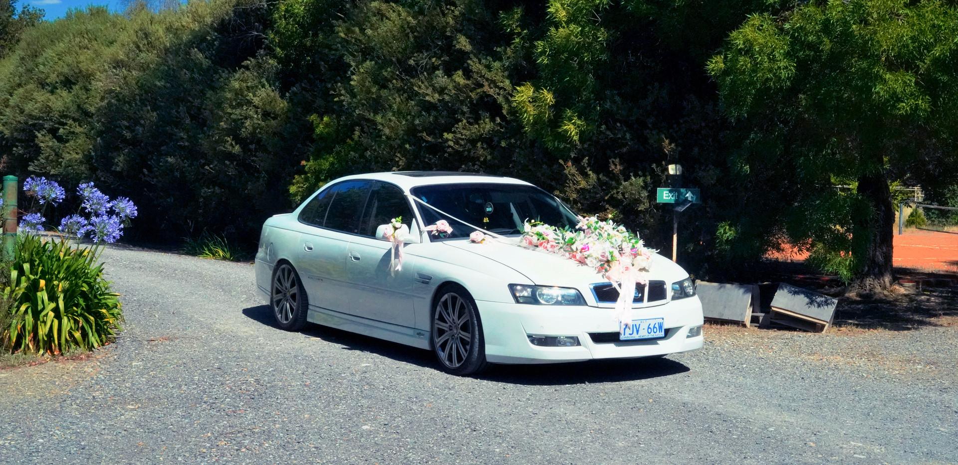 rebrowgarden_weddingcar2.JPG