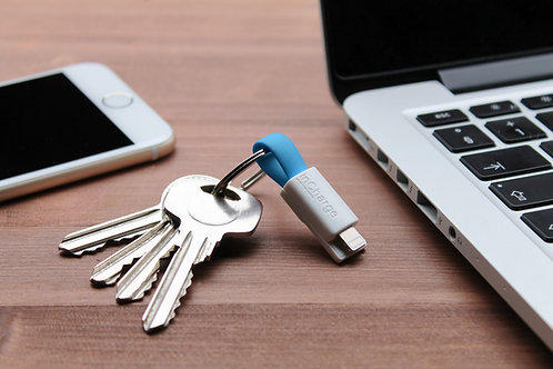 inCharge Keyring Cable (Keys)