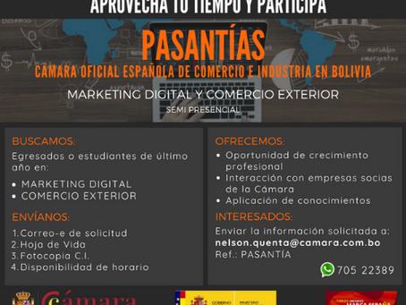Pasantías en Marketing Digital y Comercio Exterior