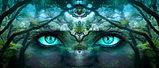 méditation_yeux.jpg