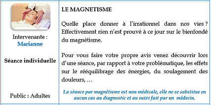 SI_magnétisme.png