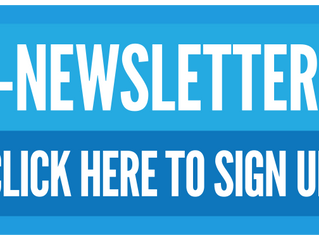 Constructing a Email Newsletter