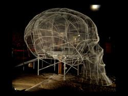 crâne def