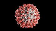 Coronavirus 7.tif