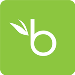 BambooHR Logo Square .png