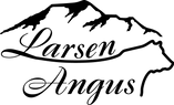 LA Logo Main.png