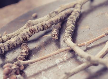 ¿Cómo trabajamos? - Transformando la naturaleza en joya