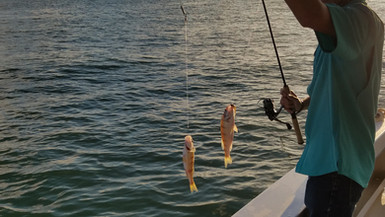 Perch Fishing with a Lake Erie Sunrise
