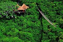 Sanya Jungle