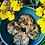 Thumbnail: Mini Pāes de sementes