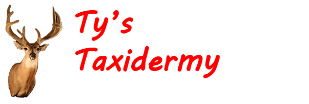 Ty's Taxidermy