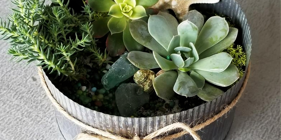 Sip & Succulent Container Making