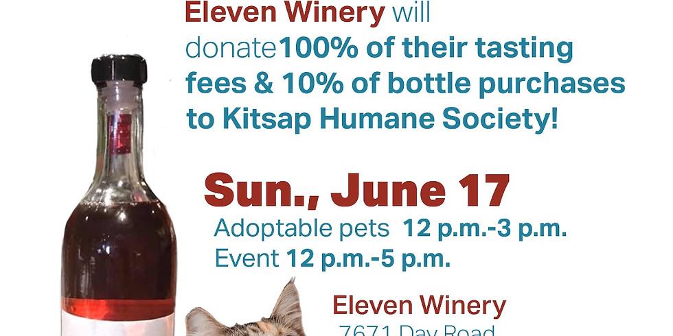 Sunday FUNday: Kitsap Humane Society