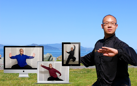 Private Online Tai Chi Classes