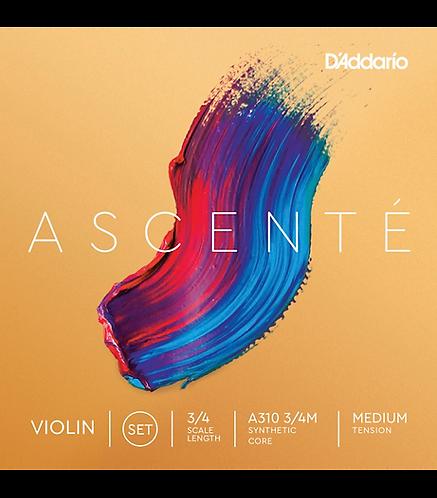 Ascente Violin String Set  3/4 Size - Medium - D'addario