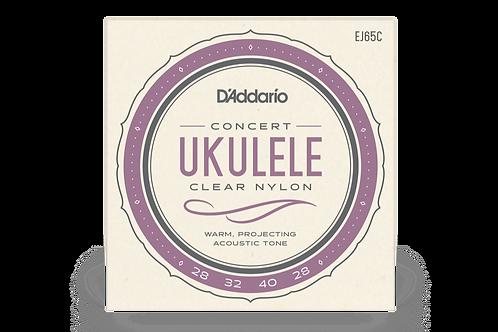 EJ65C Concert Ukulele Clear Nylon - D'addario