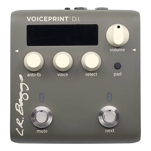 Voiceprint Acoustic DI : L.R. Baggs
