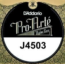 NY3 - D'addario
