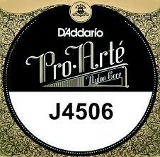 NY6 - D'addario