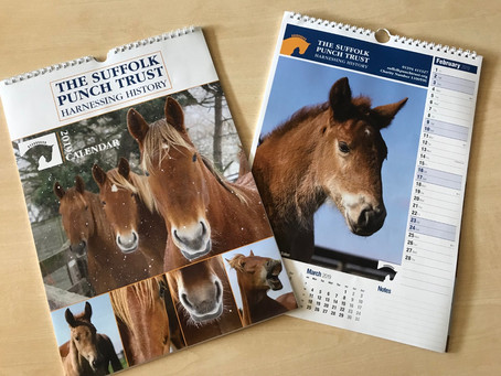 Christmas Cards and 2019 Calendars