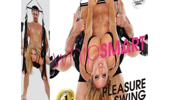 Whip Smart Pleasure Swing