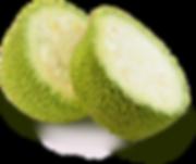 png-jackfruit-unripe-jackfruit-how-matur