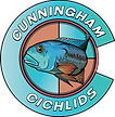 Cunningham Cichlids - South Beach Colorw