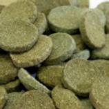 Cunningham Cichlid's Algae Waffer