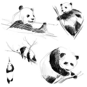 Jednoduchá náčrtková ilustrace