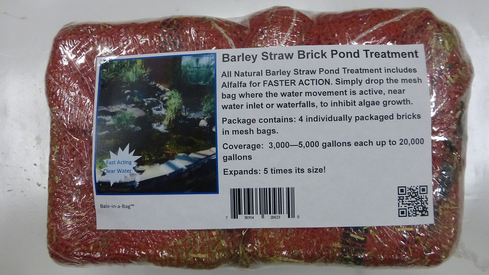 Barley Straw Bricks
