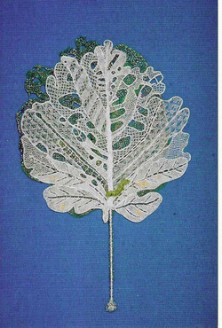 The cabbage leaf